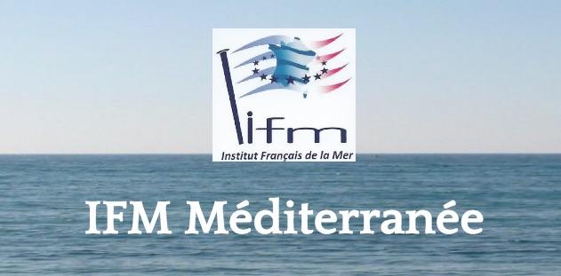 IFM med logo
